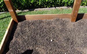 Potato Build-A-Bed