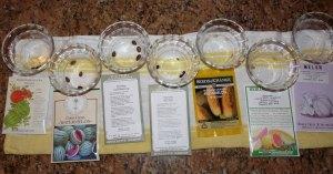 Melon varieties
